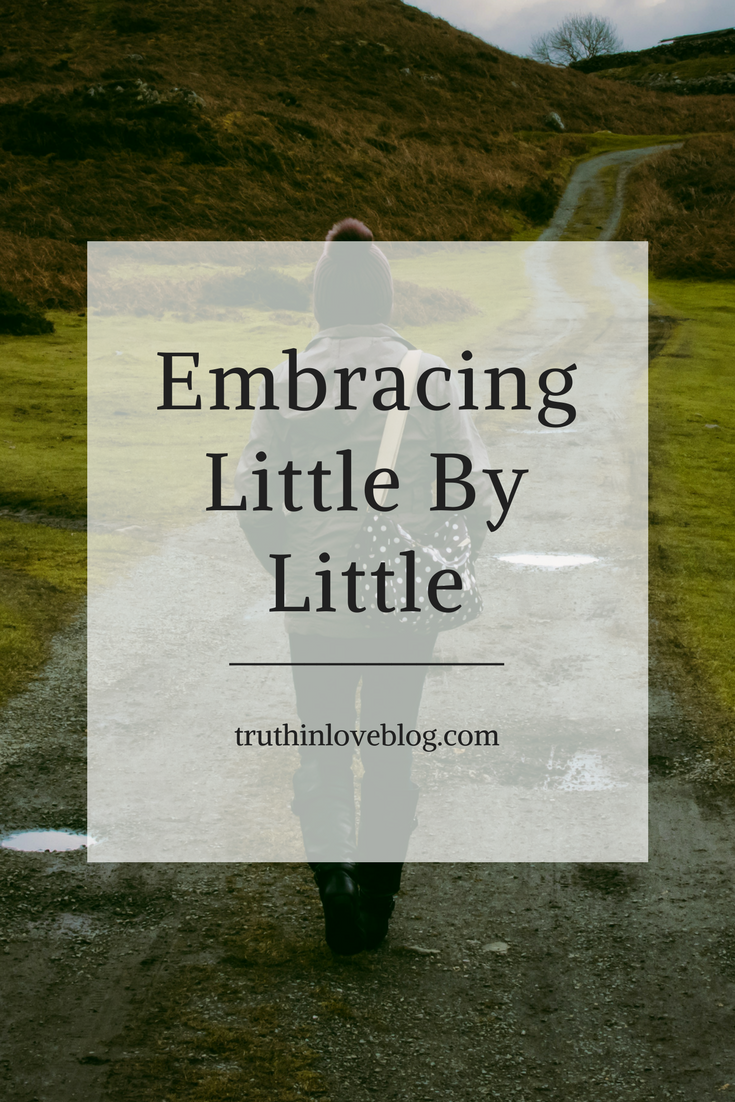 Copy of Embracing Little-By-Little